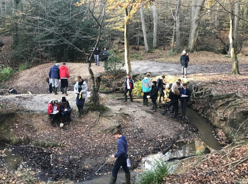 Geography's Rivers Day trip at Epping Forest