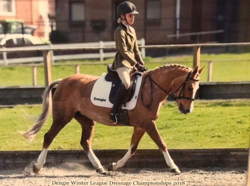 Haileybury equestrians excel in dressage championships
