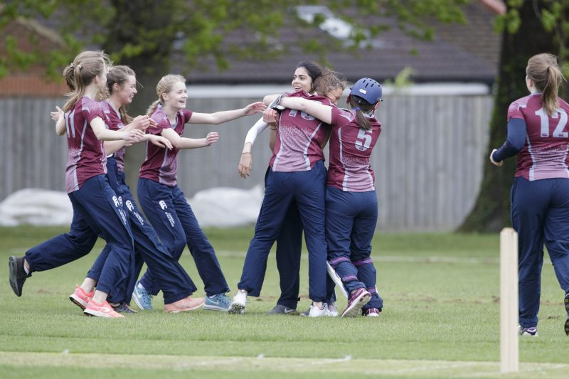 Haileybury ranked among top schools for cricket in the country