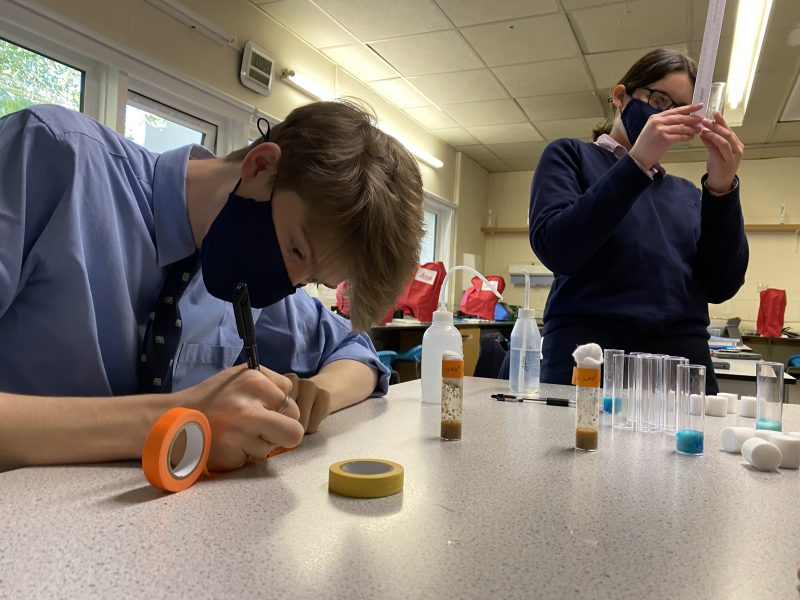 Investigations by pupils advance biomedical research: a first in Europe